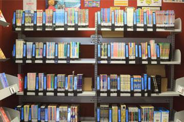 Kelston-primary-school-library-books.jpeg
