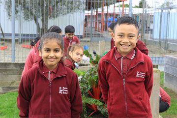 Kelston-primary-school-environment-garden-orchard.jpeg