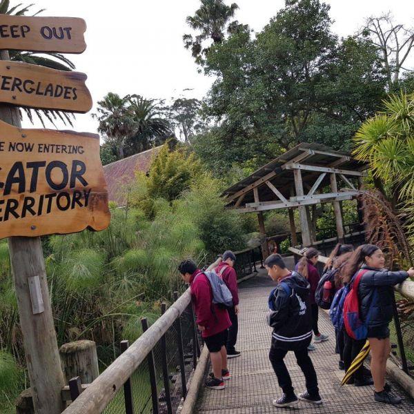 Kelston-Primary-Zoo-Trip-2019 (245).jpg
