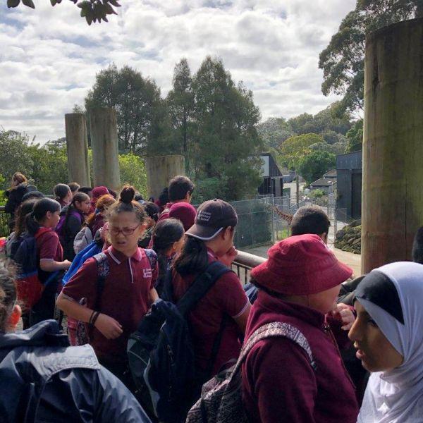 Kelston-Primary-Zoo-Trip-2019 (13).jpg