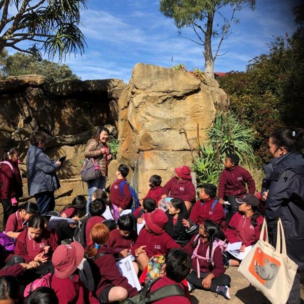 Kelston-Primary-Zoo-Trip-2019 (19).jpg