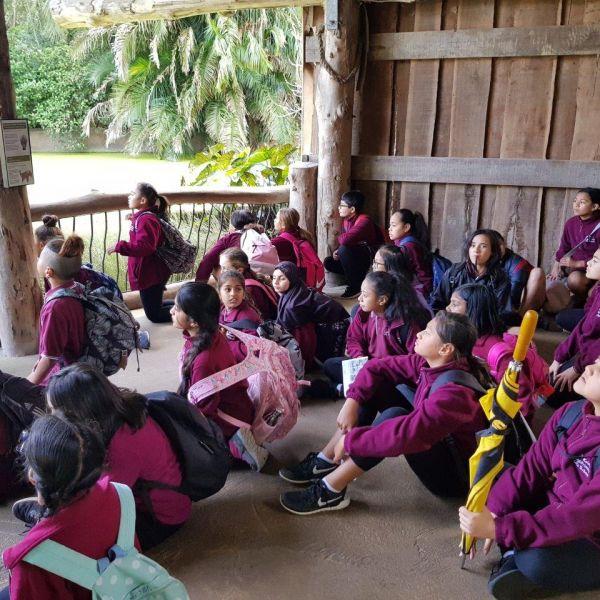 Kelston-Primary-Zoo-Trip-2019 (251).jpg
