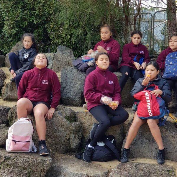 Kelston-Primary-Zoo-Trip-2019 (226).jpg