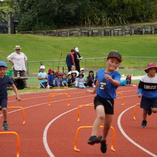 Kelston-Primary-School-Athletics-Day-2018 (19).jpg