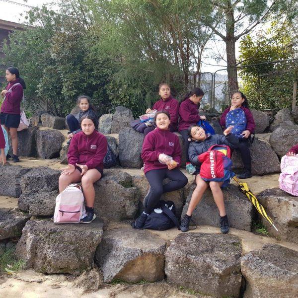 Kelston-Primary-Zoo-Trip-2019 (221).jpg