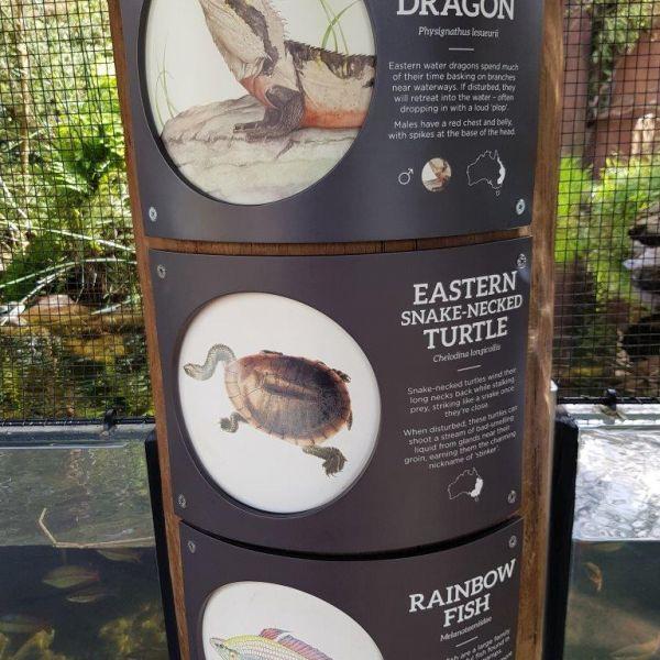 Kelston-Primary-Zoo-Trip-2019 (220).jpg