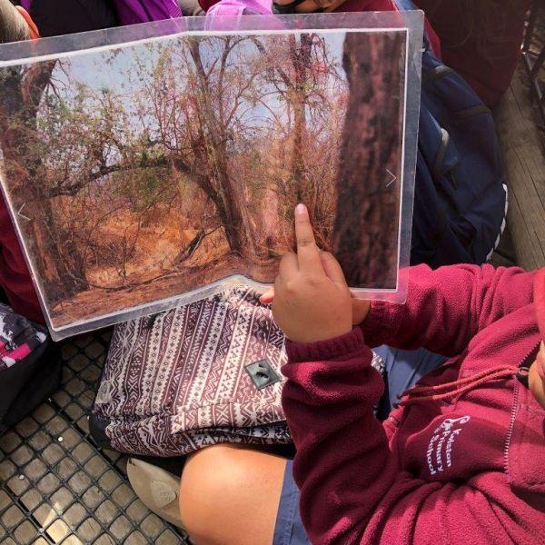 Kelston-Primary-Zoo-Trip-2019 (17).jpg