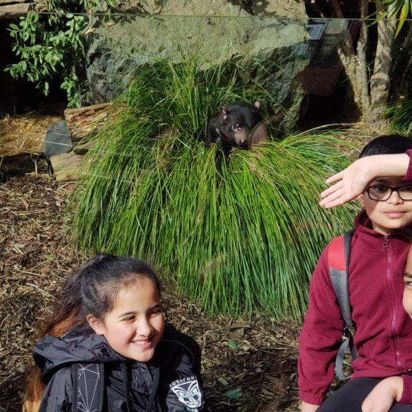 Kelston-Primary-Zoo-Trip-2019 (216).jpg