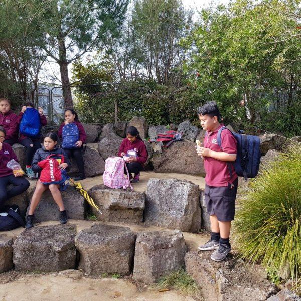 Kelston-Primary-Zoo-Trip-2019 (223).jpg