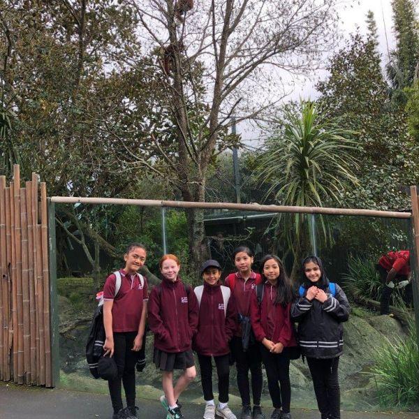 Kelston-Primary-Zoo-Trip-2019 (1).jpg