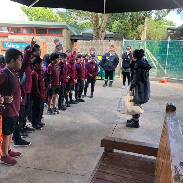 Kelston-Primary-Zoo-Trip-2019 (9).jpg
