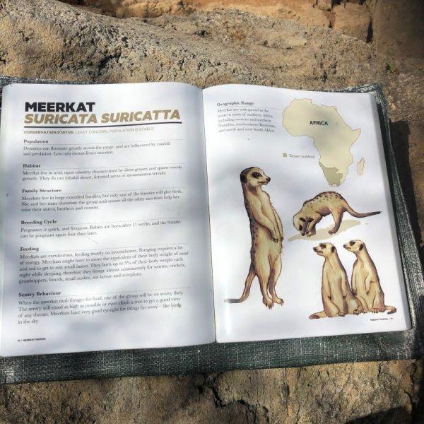 Kelston-Primary-Zoo-Trip-2019 (20).jpg
