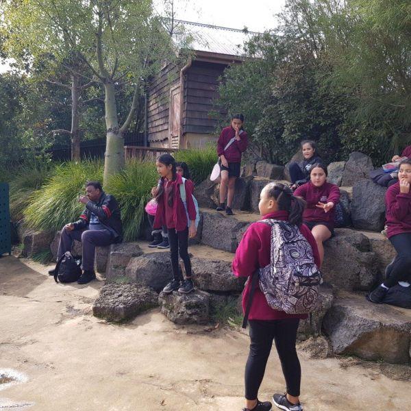 Kelston-Primary-Zoo-Trip-2019 (222).jpg