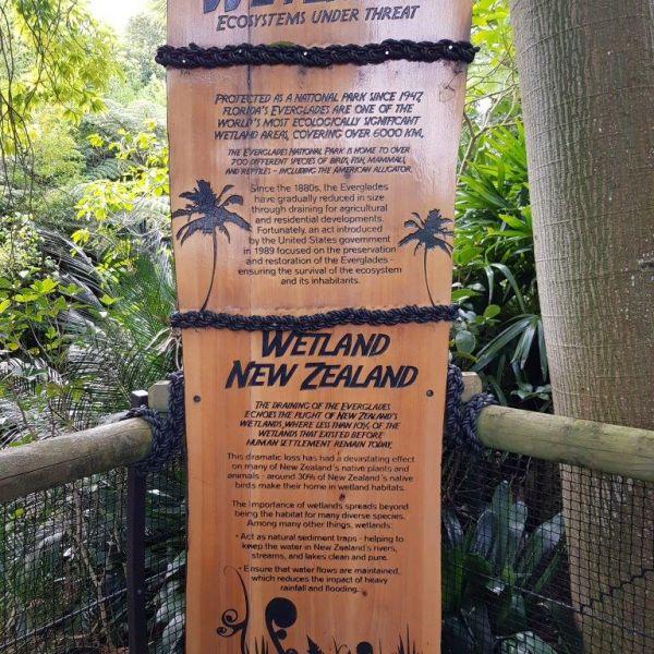 Kelston-Primary-Zoo-Trip-2019 (247).jpg
