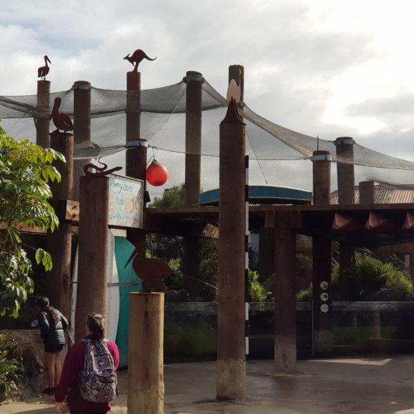 Kelston-Primary-Zoo-Trip-2019 (227).jpg